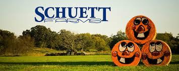 Southeast Wisconsin Pumpkin Patches by Schuett Farms Wisconsin Pumpkin Farm