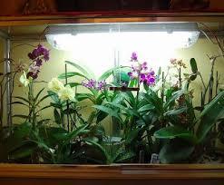 Un Giardino In Casa, Le Mini Serre