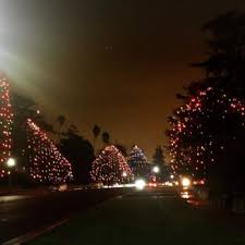 Christmas Tree Lane Fresno Ca History by Christmas Tree Lane 53 Photos U0026 12 Reviews Christmas Trees