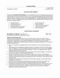 Area Sales Resume Sample Valid Management Summary For Executive