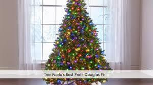 Menards Artificial Slim Christmas Tree by The World U0027s Best Prelit Douglas Fir Youtube