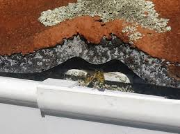 advice how to get rid of a wasp nest in eaves