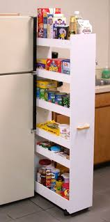 Pantry Cabinet Shelving Ideas by Small Pantry Storage Ideas Wonderful Home Design
