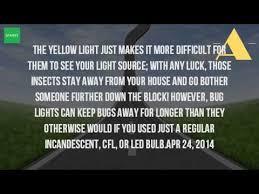do yellow bug light bulbs work