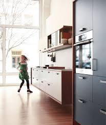 the kitchen that henrybuilt plastolux modern kitchen