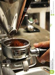 Barista Obtaining Freshly Grinded Coffee Powder