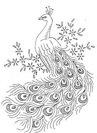Good Peacock Coloring Pages 91 On Site With