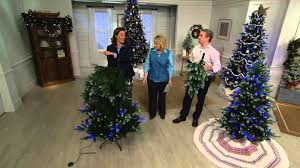 Qvc Pre Lit Christmas Trees by Ed On Air Santa U0027s Best Frosted Fraser Fir Tree By Ellen Degeneres