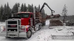 100 Trucks Are Us Log Piles SINKING The Logging Swarming