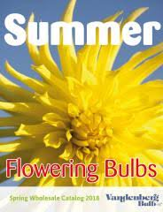 free flower bulb catalogs flowers ideas for review