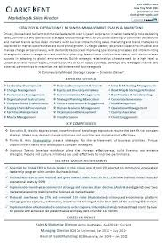 Resume Objective Examples Restaurant Management Sales And Marketing Director Example