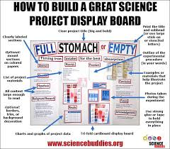 Lava Lamp Science Project Results best 25 science project board ideas on pinterest science fair
