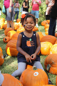 Pumpkin Patch Charlotte Nc Providence Rd by Pumpkin Patch Fall Festival Presented By Hana And Arthur Ginzbarg