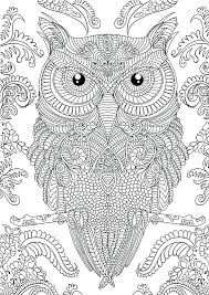 Intricate Coloring Pages For Adults Owl Page Difficult Color By Number