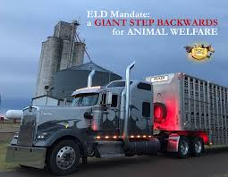 Giant Step Backward For Animal Welfare - ELD Mandate Moran Logistics Youtube Truck Drivers Detained More Than 3 Hours Dat History Members Distributors Consolidators Of America Lone Star Transportation Merges With Daseke Inc Top 100 Truckers 2016 About Cporation List Top Motor Carriers Released For 2017 Mike President Linkedin Filemoran Fleet Tractorsjpg Wikimedia Commons