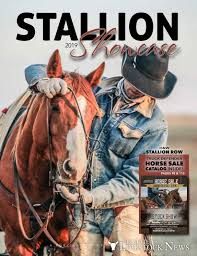 100 Black Hills Trucking Williston Nd Stallion Showcase Stock Show Horse Sale