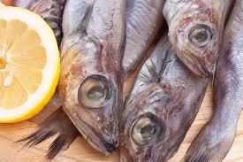 comment cuisiner le merlan tout sur le merlan le choisir le cuisiner le conserver