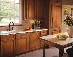 Kitchen Cabinet Levelers by Kitchen Built In Kitchen Cabinets Kraftmaid Cabinets Reviews