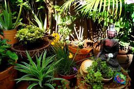 Image Indian Balcony Garden Decoration Ideas