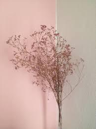 rosa wandgestaltung bilder ideen