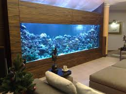 aquarium ideen 108 designs zum integrieren in der wohnung