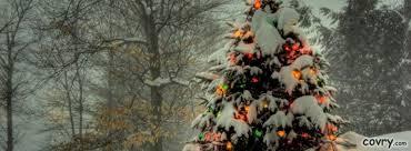 Christmas Tree Outside Cover