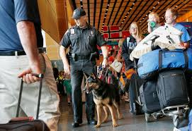 Pet Shed Promo Code June 2017 by Bomb Dogs Failed Dozens Of Tests At 10 Large U S Airports Nbc News