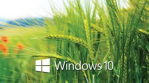 arri鑽e plan bureau windows windows 10 god mode et effets visuels