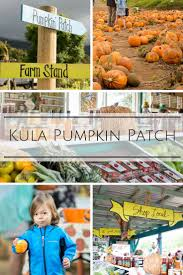 Kohala Mountain Road Pumpkin Patch by 138 Best Hawaii Vacation Activities Images On Pinterest Hawaii