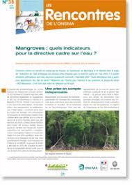 mangroves quels indicateurs pour la directive cadre sur l eau