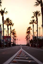 Sunset California TumblrHotel CaliforniaCalifornia SunsetSouthern Palm TreesCalifornia PicturesPalm