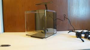 I picked up a Petco branded 3 7 gallon cube tank today The