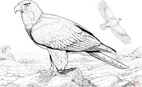 Click The American Bald Eagle Coloring Pages To View Printable