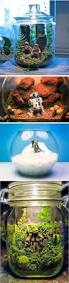 Star Wars Fish Tank Decorations by Best 25 Aquarium Accessories Ideas On Pinterest Fish Tank