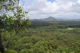 100 Mount Tinbeerwah Brisbane Tewantin Bristolian Abroad