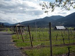 Pumpkin Patch Medford Oregon by Fall Wine Tours In Southern Oregon Rogue In Oregon