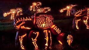 Roger Williams Pumpkin by The Internet U0027s Best Halloween 2014 Jack O Lanterns The Daily Dot