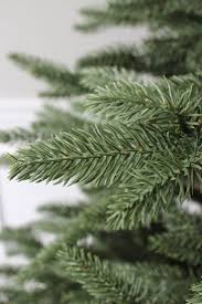 Fraser Fir Christmas Trees Uk by 123 Best Realistic Christmas Trees Images On Pinterest Balsam