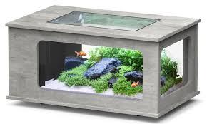 aquariums poisson animaloo