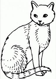 Special Offer Cat Coloring Pages Printable SCBU Free For Kids