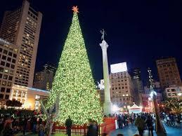 Luers Christmas Tree Farm by Best 20 Rustic Christmas Trees Ideas On Pinterest Rustic