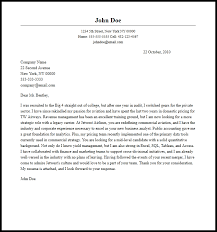 Professional Business Analyst Cover Letter Sample & Writing Guide