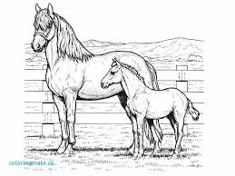 Horse Jumping Coloring Pages Of Horses