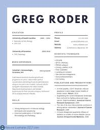 Best Resume Examples 2017 Top Cv 2018 To Try