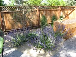 The Art Of Landscaping: Dog-Friendly Landscaping Dog Friendly Backyard Makeover Video Hgtv Diy House For Beginner Ideas Landscaping Ideas Backyard With Dogs Small Patio For Dogs Img Amys Office Nice Backyards Designs And Decor Youtube With Home Outdoor Decoration Drop Dead Gorgeous Diy Fence Design And Cooper Small Yards Bathroom Design 2017 Upgrading The Side Yard