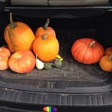Pumpkin Patch Utah South Jordan by Okubo Farm U0026 Greenhouses Farmers Market 2055 Gardner Ln West
