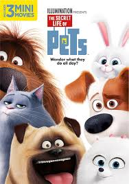 Thomas Halloween Adventures Dvd Dailymotion by The Secret Life Of Pets Dvd Dvd And Blu Ray Pinterest Secret