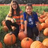 Livermore Pumpkin Patch Farm by G U0026m Farms 133 Photos U0026 107 Reviews Attraction Farms 487 E