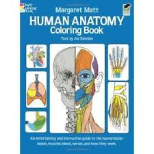 Human Anatomy Coloring Book Dover Childrens Science Books Paperback