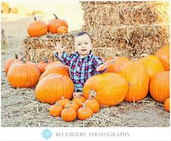 Pumpkin Patch Nashville Area by 14 Best Pumpkin Patch Images On Pinterest Pumpkin Patches